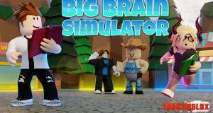 Códigos para Big Brain Simulator